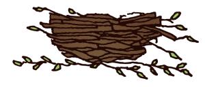 Empty Nesters Journey