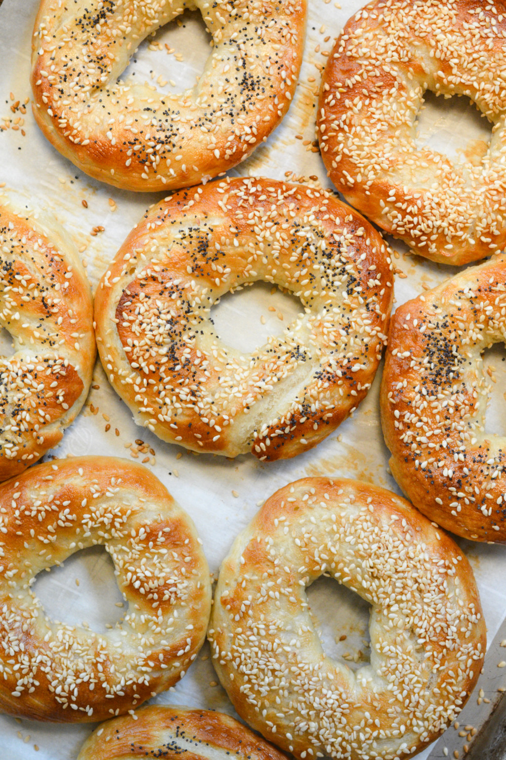 Discussion on this topic: Montreal-Style Bagels, montreal-style-bagels/